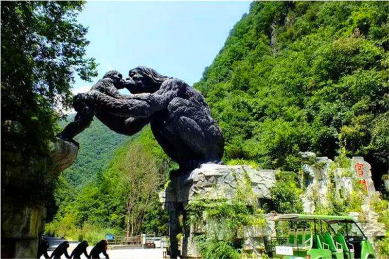 神农架中国摄影家协会会员证政策