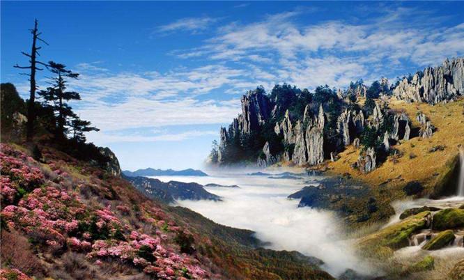 t神农架中国摄影家协会会员证政策